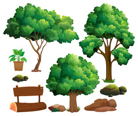Different types of trees and garden elements