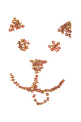 Cat face made out of cat food isolated on a white background