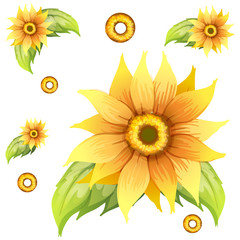 Seamless background design with sunflowers