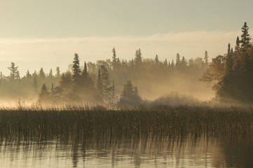 Stores à enrouleur Matin avec brouillard Dawn on the river in Northern Ontario