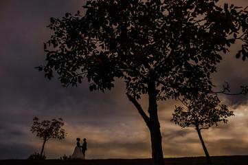 wedding bride groom sky