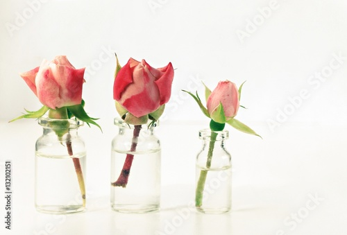 Pink rosebuds in little apothecary glass bottles for 500 decoration details minimalism