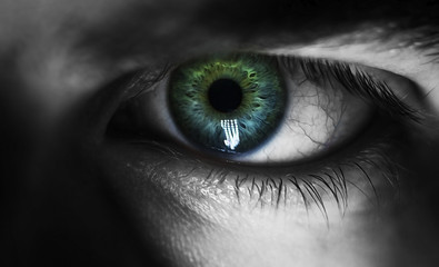 beautiful human eye, macro, close up  blue, yellow, brown,