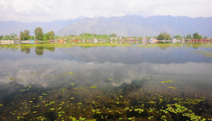 Nigeen Lake in the morning, Kashmir, India