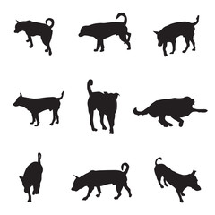 collection of silhouette dogs, pet vector illustration