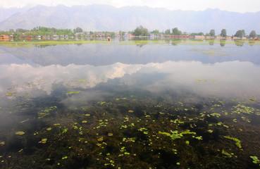 Nigeen Lake in the morning, Kashmir, India