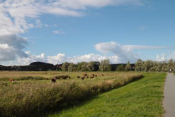 Radwandern, Rügen, Thiessow, Ostsee