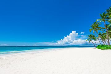 paradise tropical beach Wall mural