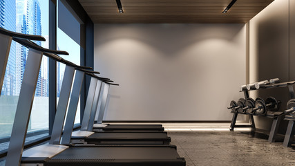 Modern Gym with white wall / 3D Rendering
