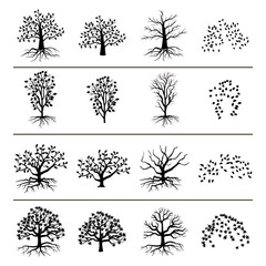 Vector trees with roots, foliage and fallen leaves isolated on white background