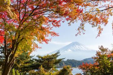 Mt.Fuji in autumn
