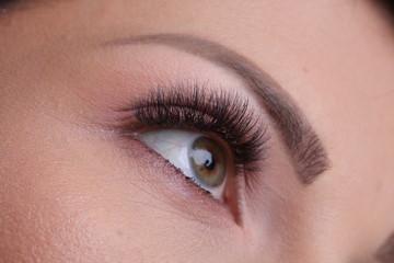 Closeup of makeup with fake eyelashes and tattooed eyebrow