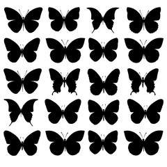 vector butterfly insect art decorative wings silhouette