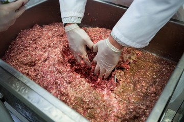 Hands of butcher mixing minced meat