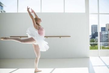 Ballerina practicing a ballet dance