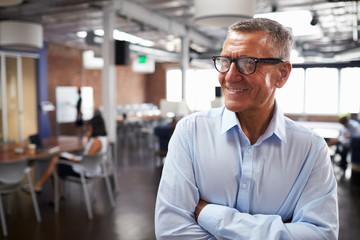 Mature Businessman Standing In Modern Open Plan Office