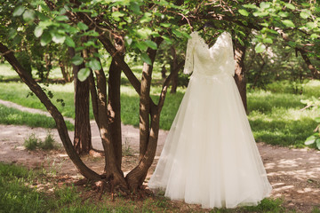 Wedding fashion. White lace wedding dress hang on the tree branch in the garden