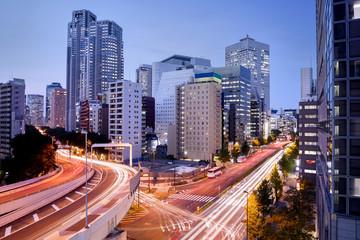 Cityscape at Dusk in Shinjuku District, Tokyo, Japan