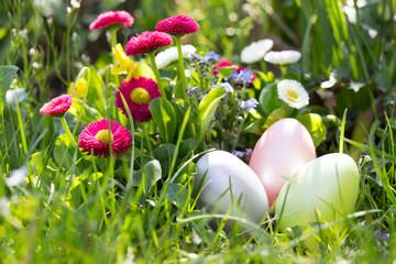 Ostereier im Garten suchen