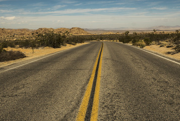 Open Road-Joshua Tree