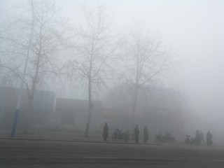people in haze