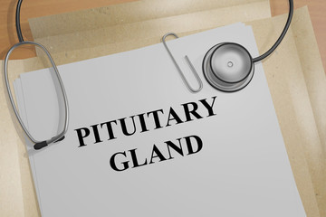 Pituitary Gland - medical concept