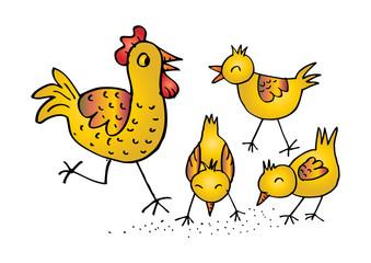 Chicken family Funny cartoon