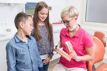 Junge Zahnarzthelferin erklärt zwei Kindern das richtige Zähne