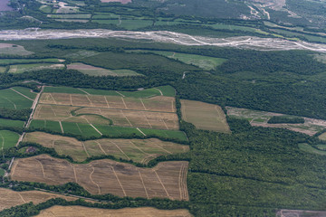fields with crops