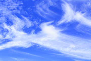 Cirrus cloud with blue sky on bright day
