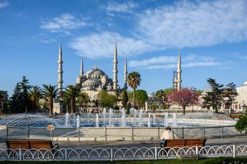 Wall Mural - Blue MosqueIstanbul, Turkey