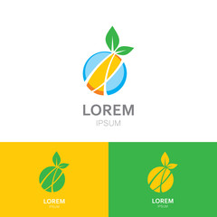 ecology green leaf fruit abstract logo