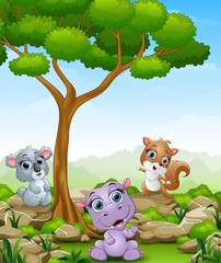 Cartoon hippo with koala and squirrel in the jungle