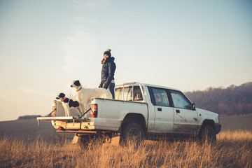 Girl standing on car with dogs in offroad tour