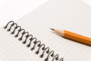 Pencil on the pages of an open notebook for records