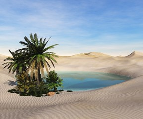 Oasis in the desert. Palm trees and a lake.