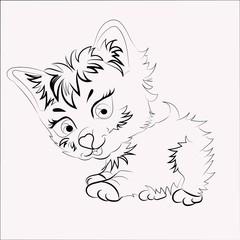 vector illustration kitten