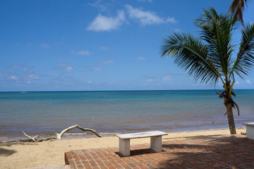 Fotobehang Strand Beautiful tropical white sandy beach with bench in Las Terrena