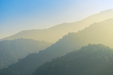 Forested mountain slope in low lying cloud in mist in a scenic landscape