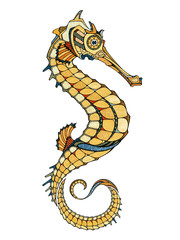 Seahorse, illustration