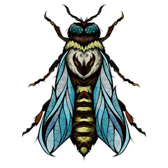 Bee, illustration