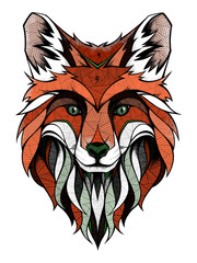 Fox head, illustration
