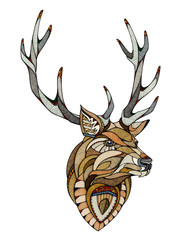 Deer head, illustartion