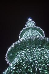 Christmas tree, decorated on black background