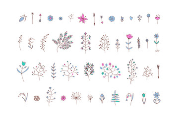 Hand Drawn vintage floral elements. Vector. Isolated.The set of hand-drawn vector decorative elements for your design. Leaves, branches, floral elements. Wedding, birthday, Valentine's day.