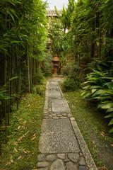 Lantern, Japanese garden in Kyoto
