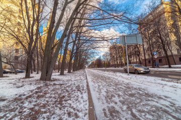 Tilt and shift view wide angle view of tree alley near street crossing the campus of Moscow University