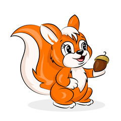 cartoon cute vector squirrel with acorn at the white background