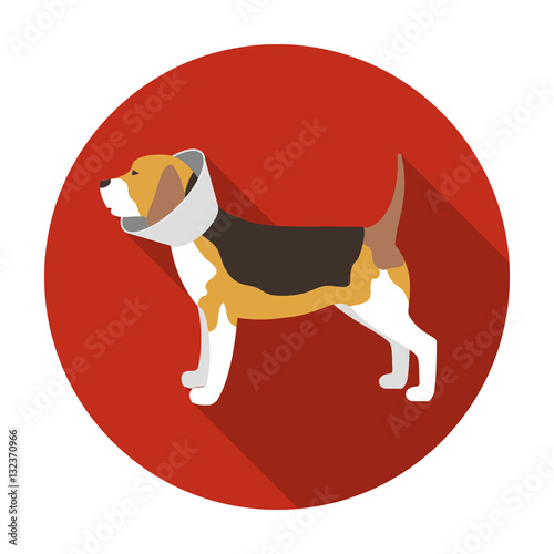 Dog With Elizabethan Collar Icon In Flat Style Isolated