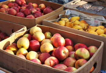Fresh fruits in cardboard boxes on market